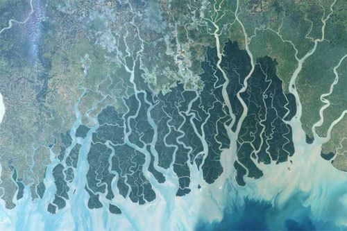 The Bangladesh delta: rising sea levels are changing the salinity of ...