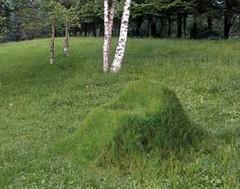 Grasschair