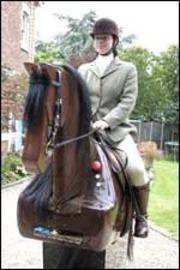 Horsesimulator_3